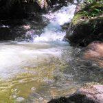 trilha-pico-agudo-santo-antonio-do-pinhal-13