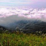 trilha-pico-agudo-santo-antonio-do-pinhal-15