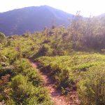 trilha-pico-agudo-santo-antonio-do-pinhal-3