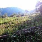 trilha-pico-agudo-santo-antonio-do-pinhal-6