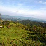 trilha-pico-agudo-santo-antonio-do-pinhal-7