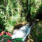 trilha-pico-agudo-santo-antonio-do-pinhal-8